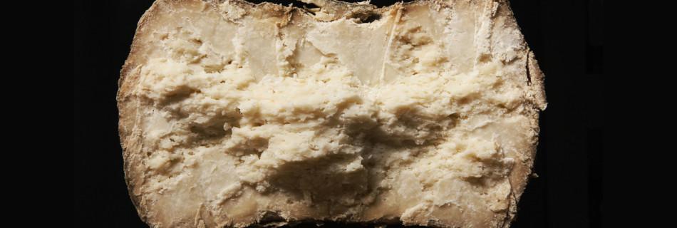 Il Pecorino Fiore Sardo di Orgosolo: il pascolo e il latte